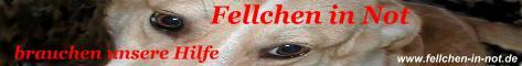 Banner+Fellchen+in+Not